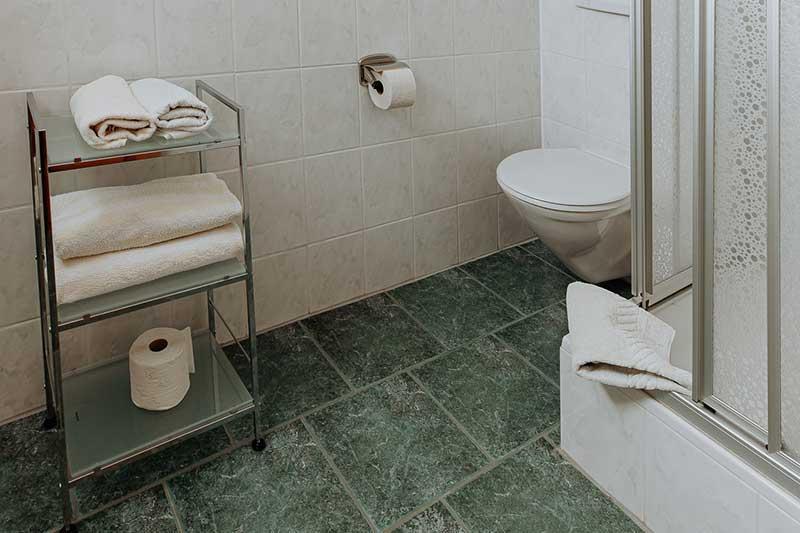Badezimmer mit Toilette und Dusche.